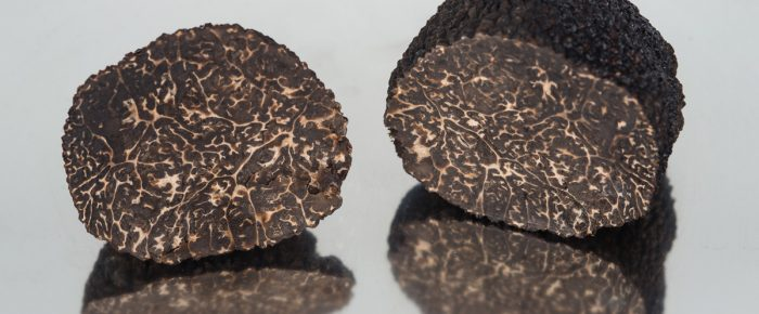 Decalogue of the European black truffle